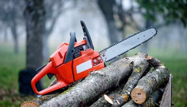 tree_removal_tools
