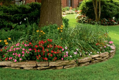 landscaping-shady-areas